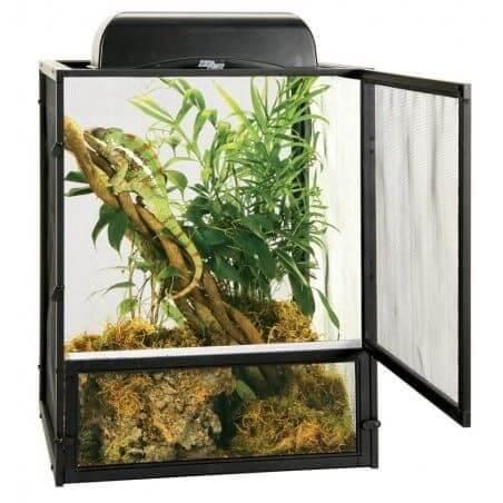 terrario para camaleón