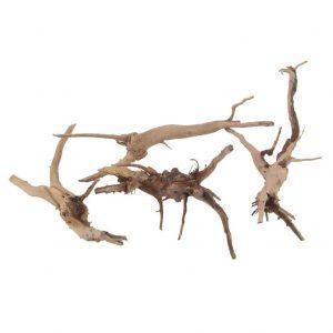 ramas para terrario
